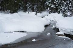 在登上西摩雪靴足迹旁边的冻池塘 免版税库存照片