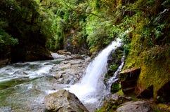 在登上里士满森林公园的瀑布 免版税库存照片