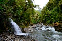 在登上里士满森林公园的瀑布 图库摄影