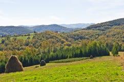 在登上Bobija,小山、干草堆、草甸和五颜六色的树风景的观点  免版税库存图片