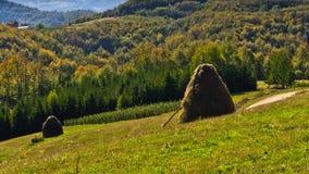 在登上Bobija,小山、干草堆、草甸和五颜六色的树风景的观点 库存图片