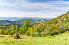 在登上Bobija,峰顶、小山、岩石、草甸和五颜六色的森林风景的观点  免版税图库摄影