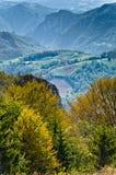 在登上Bobija,峰顶、小山、草甸和绿色森林风景的观点  免版税库存照片