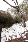在登上Hotham小山的雪  图库摄影
