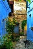 在登上Mithridates历史的街道上的露台  刻赤 克里米亚 免版税库存照片