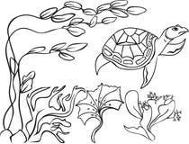 在水下的世界的剪影乌龟 库存照片