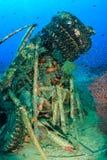 在水下的残骸附近的Glassfish群在一块热带礁石 库存图片