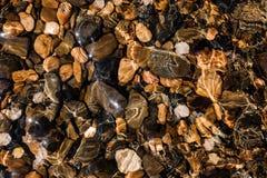 在水下的色的小卵石在海岸 库存照片