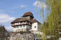 在13世纪修造的城堡在弗劳恩费尔德,瑞士 免版税库存图片