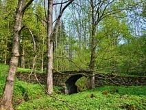 16世纪的捷克共和国历史的石桥梁 库存照片