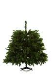 在16个图象系列被设定的圣诞树 图库摄影