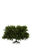 在16个图象系列被设定的圣诞树 免版税图库摄影