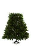在16个图象系列被设定的圣诞树 库存图片