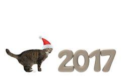 在2017个新年数字附近的圣诞老人猫 免版税库存照片