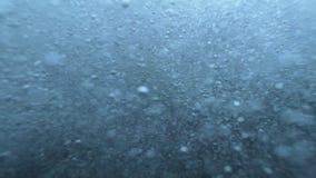 在水之下的泡影 股票录像