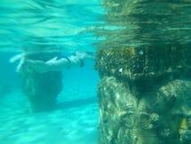 在水之下 库存图片