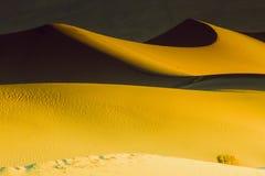 在死亡谷沙丘的阴影 库存照片