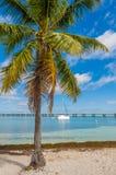 在巴伊亚本田钥匙海湾,佛罗里达,美国的游艇 库存照片