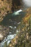 在更低的秋天底部,黄石河,怀俄明的薄雾 免版税库存照片