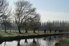在更低的莱茵河地区的早期的春天 免版税库存图片