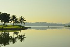 在更低的Seletar水库新加坡的平安的早晨 图库摄影