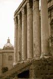 在141公元兴建的Antoninus和Faustina寺庙的乌贼属图象,在罗马广场,罗马,意大利,欧洲 库存图片
