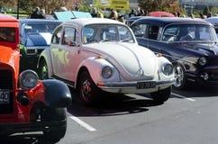 在经典车展的大众甲壳虫 库存照片