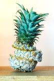 在结冰以后的菠萝 免版税库存照片