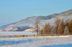 在贝加尔湖岸的有薄雾的早晨在海角Bolshoy Kadilniy附近的在冬天 免版税图库摄影