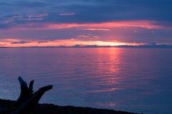 在贝加尔湖的日落在夏天 免版税库存图片