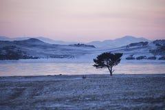 在贝加尔湖的日落 33c 1月横向俄国温度ural冬天 免版税库存照片