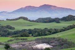 在滚动北加利福尼亚的象草的小山和蝙蝠鱼范围的日落 免版税库存图片