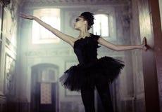 在移动的黑天鹅跳芭蕾舞者 库存照片