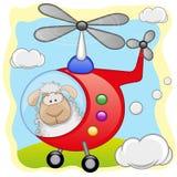 在直升机的绵羊 免版税图库摄影
