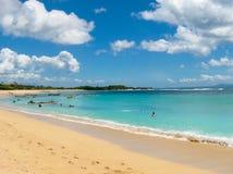 在巴厘岛海岛上的热带棕榈树围拢的美丽的白色沙子海滩在努沙Dua地区 免版税库存照片
