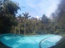 在巴厘岛的水池 免版税图库摄影