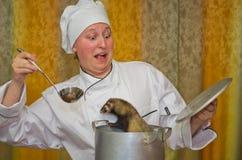 在年轻厨师的笑话 库存照片