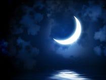 在水反映的明亮的月亮 皇族释放例证