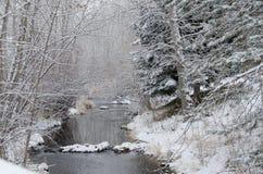 在以后的冬天小河新降雪 图库摄影