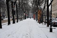 在以后的维也纳巨大的降雪 库存照片