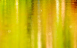 在水和背景绿草,迷离的反射 库存照片
