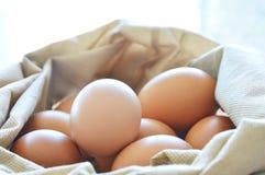 在织品袋子的未加工的棕色鸡蛋 库存图片