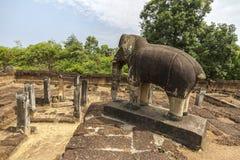在吴哥窟寺庙,柬埔寨的大象 免版税库存照片