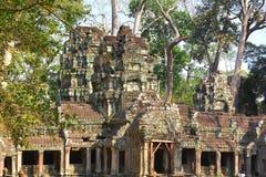 在吴哥,暹粒省,柬埔寨的Ta Prohm寺庙 库存照片