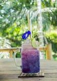 在绿园概念的清凉茶饮料,杯用花装饰的梯度紫色蝴蝶豌豆汁 免版税库存图片