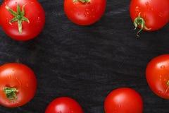 在黑土气木背景的红色西红柿框架 免版税库存图片