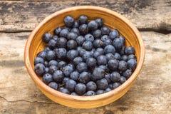 在黏土的黑刺李莓果在木背景滚保龄球 免版税图库摄影