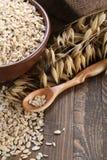 在黏土碗的燕麦粥,燕麦茎在木头背景的  免版税库存照片