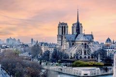 在巴黎圣母院的日落 库存照片