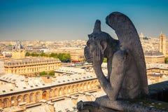 在巴黎圣母院的面貌古怪的人 免版税图库摄影